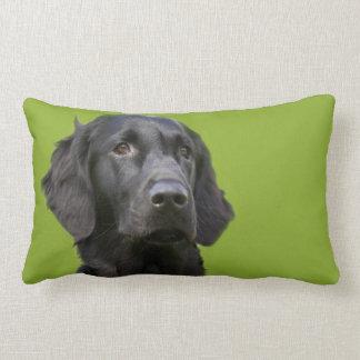 Flat Coated Retriever dog, black beautiful photo Lumbar Pillow