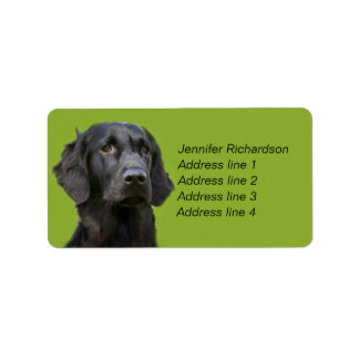 Flat Coated Retriever dog, black custom Label