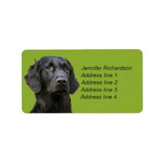 Flat Coated Retriever dog, black custom Label