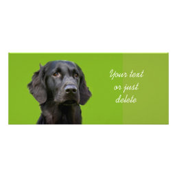 Flat Coated Retriever dog bookmark Rack Card
