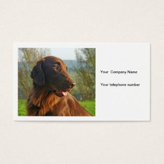 Flat Coated Retriever dog photo business card