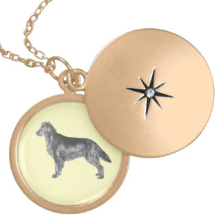 Flat Coated Retriever FCR Locket Necklace