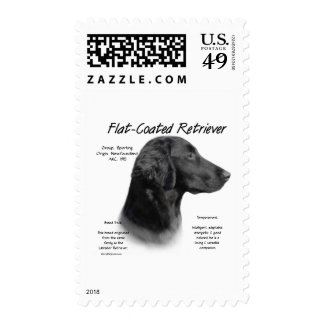 Flat-Coated Retriever History Design Postage