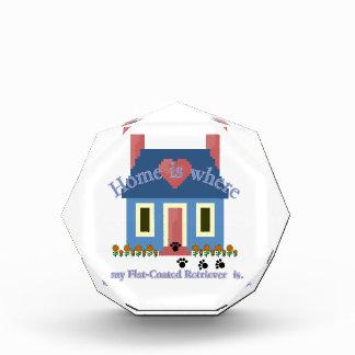 Flat-Coated Retriever Home Is Award
