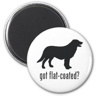 Flat-coated Retriever Fridge Magnet