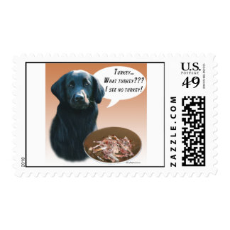 Flat-Coated Retriever Turkey Postage