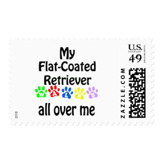 Flat-Coated Retriever Walks Design Postage