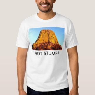 Flat Earth Has No Forests Got Stump Men's T-Shirt