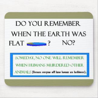 Flat Earth Mousepad