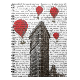 Flat Iron Building and Red Hot Air Balloons Notebook