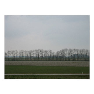 Flat Polder Landscape in Holland Photo Poster Art