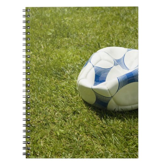 Flat soccer ball in grass, Germany Notebook