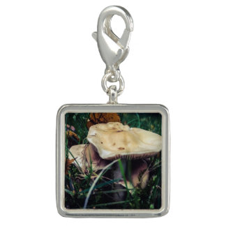 Flat Top Mushroom Photo Charm