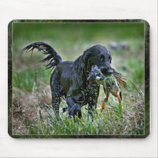 Flatcoated Retriever with duck Mouse Pad