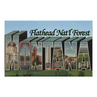 Flathead Nat'l Forest, Montana Poster