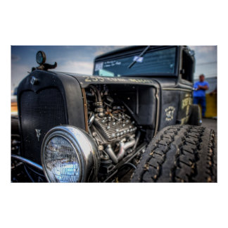 Flathead Rat in HDR Poster