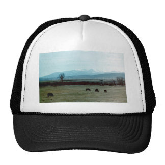 Flathead River Valley Trucker Hats