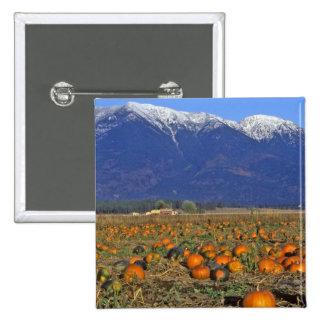 Flathead Valley Montana Pumpkin patch 2 Inch Square Button