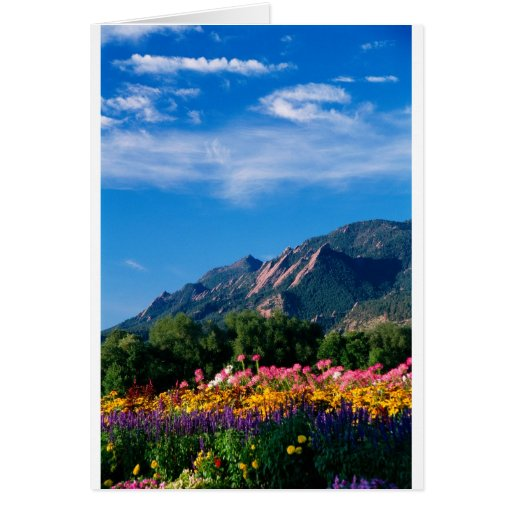 Flatirons and Flowers, Boulder Colorado Greeting Card