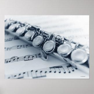 Flauta detallada póster