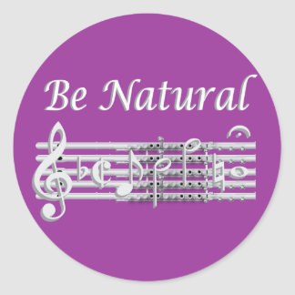 Flautists Know How to Be Natural Classic Round Sticker