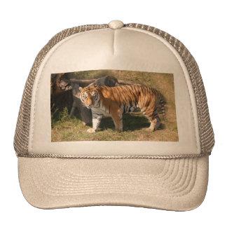Flavio 004 trucker hat