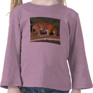 Flavio 008 camiseta