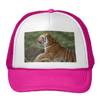 Flavio 011 trucker hat
