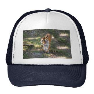 Flavio 012 trucker hat