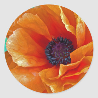 Flawless Bloom Shimmering Red Poppy Classic Round Sticker