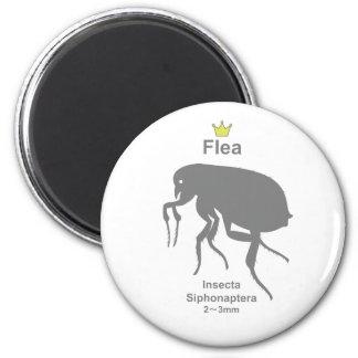 Flea g5 磁石