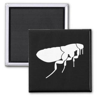 Flea Refrigerator Magnets