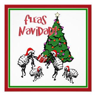 FLEAS NAVIDAD - Christmas Fleas and Christmas Tree Announcements