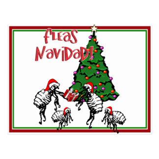 FLEAS NAVIDAD - Christmas Fleas and Christmas Tree Post Card