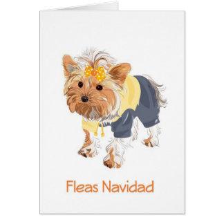 Fleas Navidad Cute Dog Christmas Card