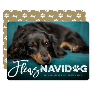 Fleas Navidog Brush Dog Lover Holiday Photo Card