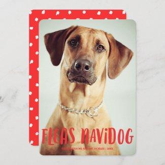 Fleas Navidog Cute Funny Dog | Holiday Photo