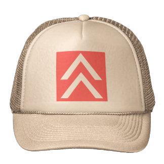 Flecha doble gorras de camionero