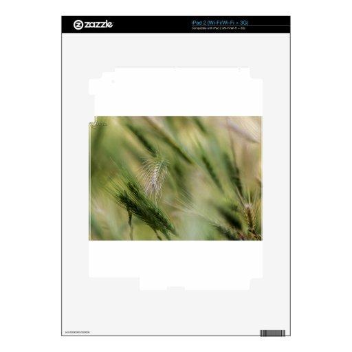 Flechas iPad 2 Calcomanía