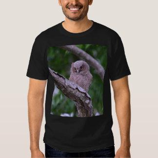 Fledgling Eastern Screech Owl Shirt