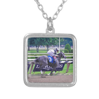 Fleetphoto's South Sound Silver Plated Necklace