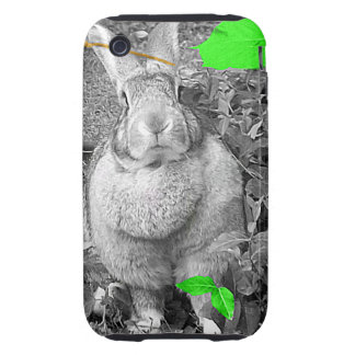 Flemish Giant Rabbit B & W with Green Leaves iPhone 3 Tough Cases
