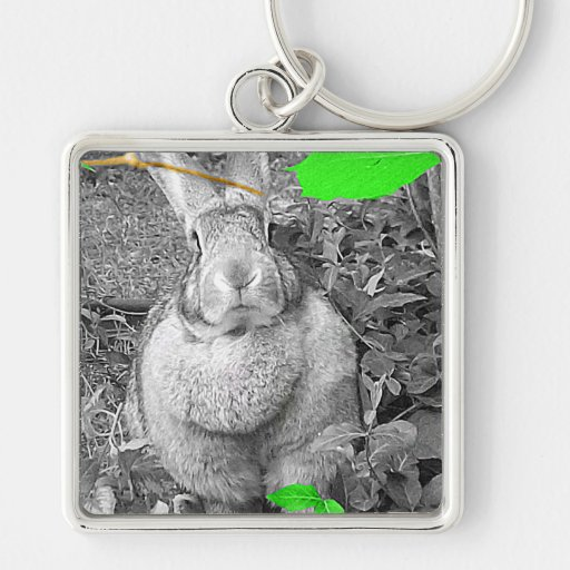 Flemish Giant Rabbit B & W with Green Leaves Key Chain