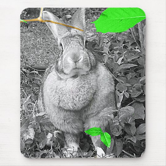 Flemish Giant Rabbit B & W with Green Leaves Mouse Pad