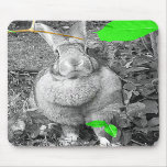 Flemish Giant Rabbit B & W with Green Leaves Mousepads
