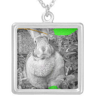 Flemish Giant Rabbit B W with Green Leaves Necklace