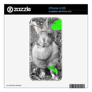 Flemish Giant Rabbit B & W with Green Leaves Skins For The iPhone 4