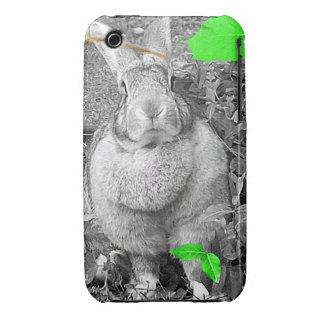 Flemish Giant Rabbit Black and White Green Leaves Case-Mate iPhone 3 Cases