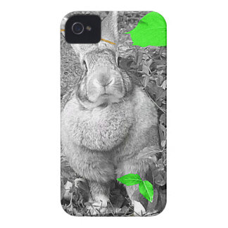 Flemish Giant Rabbit Black and White Green Leaves iPhone 4 Case-Mate Case
