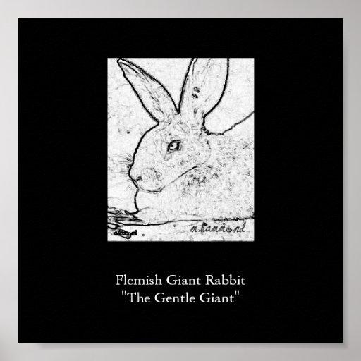 "Flemish Giant Rabbit""The Gentle Giant"" Poster"
